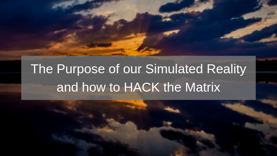The-Purpose-of-our-Simulated-Reality-and-how-to-HACK-the-Matrix