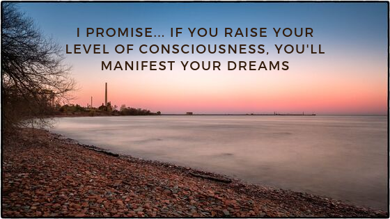 I-promise...-if-you-Raise-Your-Level-of-Consciousness-youll-manifest-your-dreams
