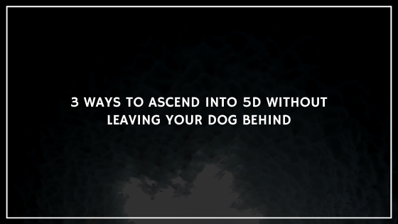 3-Ways-to-Ascend-into-5D-without-leaving-your-Dog-Behind